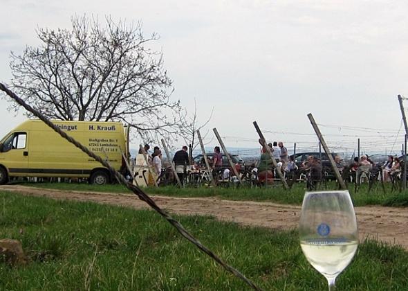 Weinhappening auf Pfälzer Höhen